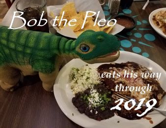 Pleo calendar cover