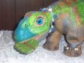 Custom Pleo